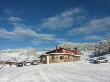 Larici Val Formica Image