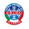 Coldai Logo