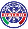Gallio Logo