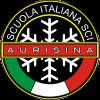 Aurisina Logo